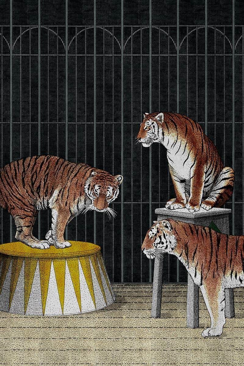 Тапет Tigers